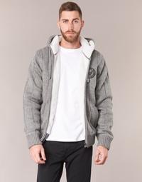 Oblačila Moški Puloverji Schott DUNLIN Siva