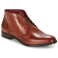Čevlji  Moški Polškornji Carlington MANNY Kostanjeva