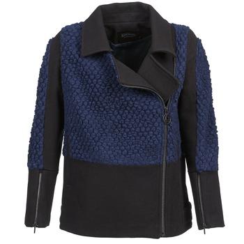 Oblačila Ženske Jakne Eleven Paris FLEITZ Črna / Modra