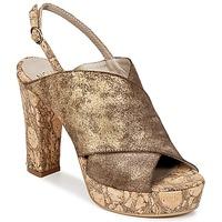 Čevlji  Ženske Cokli Now PALISSA Bronze