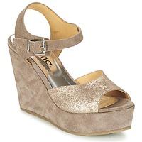 Čevlji  Ženske Sandali & Odprti čevlji Myma RAPHIA Taupe