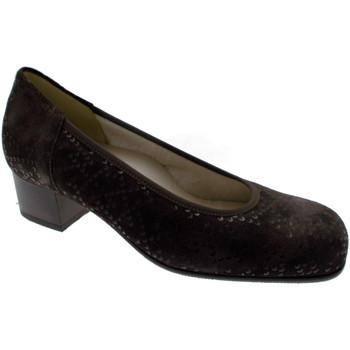 Čevlji  Ženske Salonarji Calzaturificio Loren LOP5414ma marrone