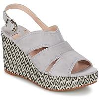 Čevlji  Ženske Sandali & Odprti čevlji Spiral PAULA Siva