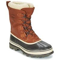 Čevlji  Moški Škornji za sneg Sorel CARIBOU WL Tabac