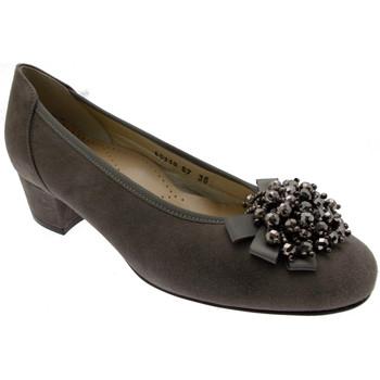 Čevlji  Ženske Salonarji Calzaturificio Loren LO60712fa grigio