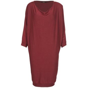 Oblačila Ženske Kratke obleke Kookaï BLANDI Bordo