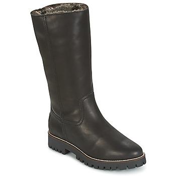 Čevlji  Ženske Mestni škornji    Panama Jack TANIA Črna