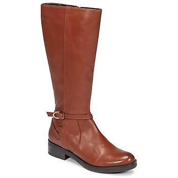 Čevlji  Ženske Mestni škornji    Betty London HOVANI Kamel