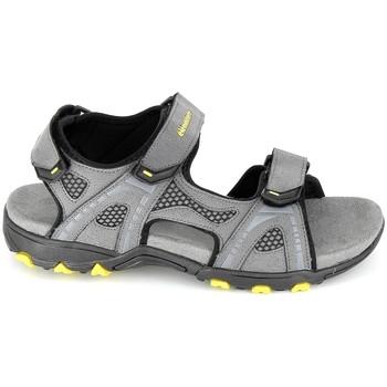 Čevlji  Moški Sandali & Odprti čevlji Elementerre Calcha Gris Jaune Siva