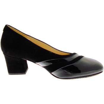 Čevlji  Ženske Salonarji Calzaturificio Loren LO60759ne nero