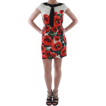 Oblačila Ženske Kratke obleke Rinascimento 1253/16A_ROSSO Blanco
