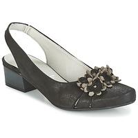 Čevlji  Ženske Sandali & Odprti čevlji Dorking TUCAN Črna