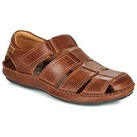 Čevlji  Moški Sandali & Odprti čevlji Pikolinos TARIFA 06J Kostanjeva