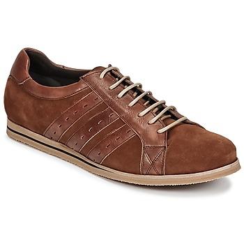 Čevlji  Moški Nizke superge So Size IGOPINETTE Kostanjeva