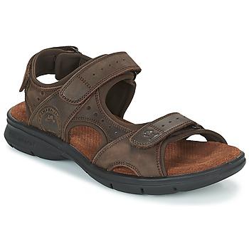 Čevlji  Moški Sandali & Odprti čevlji Panama Jack SALTON Brązowy