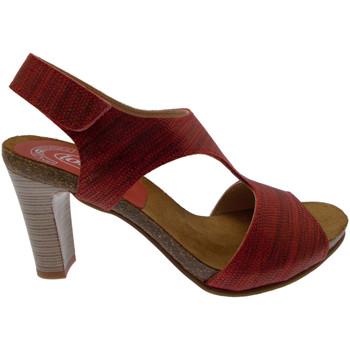 Čevlji  Ženske Sandali & Odprti čevlji Calzaturificio Loren LOJ0833ne nero