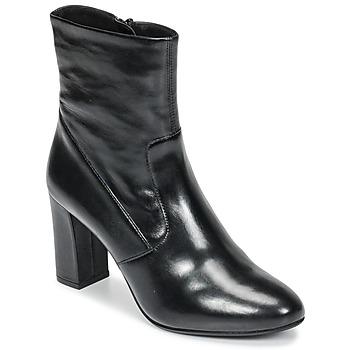 Čevlji  Ženske Gležnjarji Steve Madden AVENUE Črna