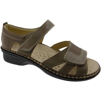 Čevlji  Ženske Sandali & Odprti čevlji Calzaturificio Loren LOM2524to tortora