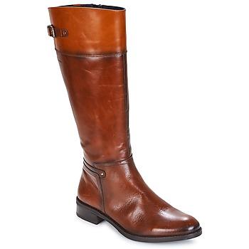 Čevlji  Ženske Mestni škornji    Dorking TIERRA Kostanjeva