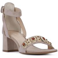 Čevlji  Ženske Sandali & Odprti čevlji Elvio Zanon SANDALO Rosa