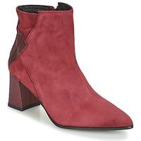 Čevlji  Ženske Gležnjarji Elizabeth Stuart DHEXTER Bordo