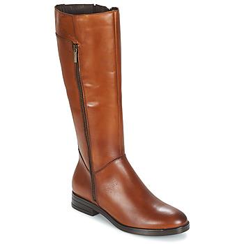 Čevlji  Ženske Mestni škornji    Betty London JANKA Kostanjeva