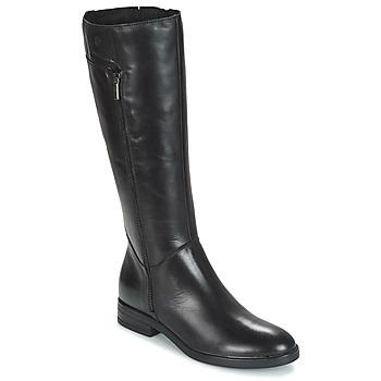 Čevlji  Ženske Mestni škornji    Betty London JANKA Črna