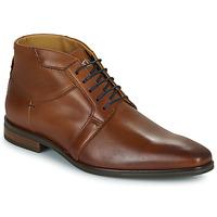 Čevlji  Moški Polškornji Carlington JESSY Cognac