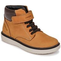 Čevlji  Dečki Visoke superge Geox J RIDDOCK BOY WPF Kostanjeva