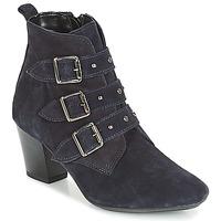 Čevlji  Ženske Gležnjarji André TRACY Modra