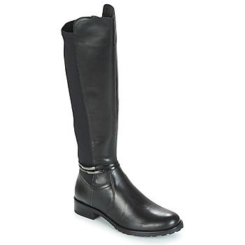 Čevlji  Ženske Mestni škornji    André CALECARA Črna