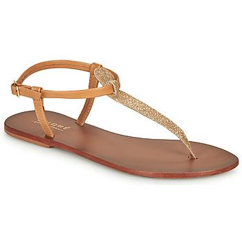 Čevlji  Ženske Sandali & Odprti čevlji André GLITTER Kamel