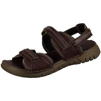 Čevlji  Moški Sandali & Odprti čevlji Josef Seibel Jim Rjava