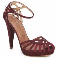 Čevlji  Ženske Sandali & Odprti čevlji Sigerson Morrison CAMOSO Rum