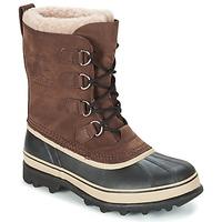 Čevlji  Moški Škornji za sneg Sorel CARIBOU Kostanjeva