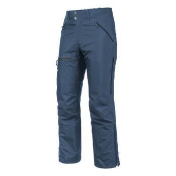 Oblačila Moški Hlače Salewa Sesvenna Ws Lrr M Pnt 25820-8671 blue